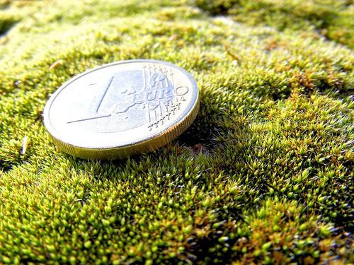 Euro verde_Daniel Rocal